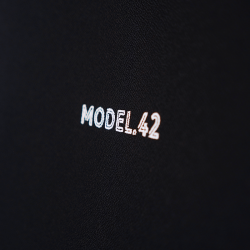 MODEL.42